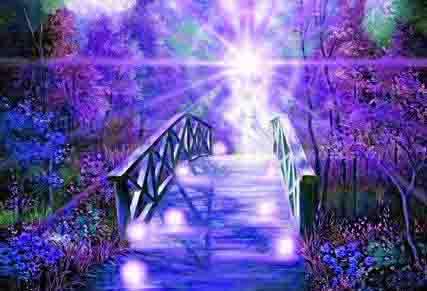 Spiritual 411 Blog Barbara Delong Spiritual Empath And